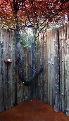 Eclectic Landscape/Yard with Outdoor Shower Company Raincan Shower Head, Outdoor shower. Bathroom Ideas.