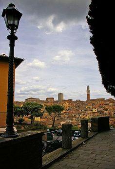 Siena (Italia)