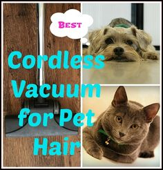 Choosing the best cordless #vacuum for pet hair will help keep your home clean and hair free. This review features the top rated vacuums available on the market to help you make the right choice. #doglovers #catowners