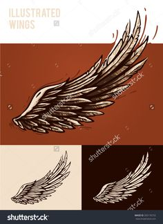 Vector illustration set of isolated wings over different background colors