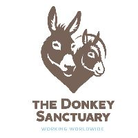 The Donkey Sanctuary. Vote for them today in the Yorkshire region for Benfield Charity Drive. Days Out In Yorkshire, The Donkey, Charity