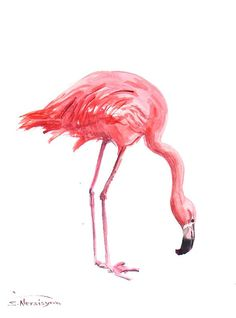 Pink Flamingo Original watercolor painting 12 X 9 by ORIGINALONLY, $32.00 (AIW)