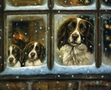 Let It Snow . . . .3 Springers watching . . . .