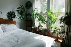 UO Guide: Small Spaces Gardening - Urban Outfitters - Blog