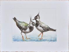 Northern lapwing Vanellus vanellus  handmade by AtelierPoltorak