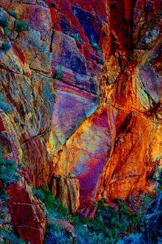 Variation Nature  by Gerard Frances