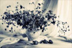 Bouquet by Sviatlana Kandybovich on 500px