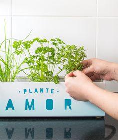 Que tal aprender a criar uma hortinha em casa? Nesse projeto de faça você mesmo…