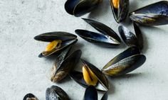 seafood on Pinterest | Mussels, Shrimp and Steamed Mussels