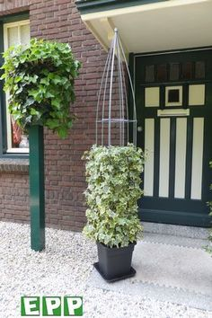 Planted wire columns from www.easyplantpillar.nl (made in Holland)
