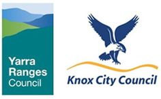 Official web site of Knox City Council Early Intervention, City Council, Assessment, Catering, Children, Free, Young Children, Boys, Catering Business