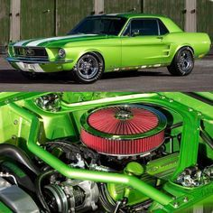 Classic Ford Mustang but non classic color! Classic Mustang, Ford Classic Cars, Mustang Fastback, Mustang Cars, Ford Mustangs, 1967 Mustang, Custom Muscle Cars, Custom Cars, Green Mustang