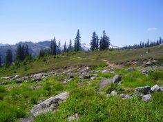 a trail I want to hike
