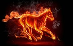 images of fire art   0kaY Guys here are some good fire art pictures .....!!!!