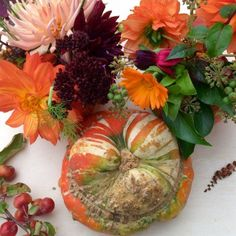 Elegant winter squash decorating ideas plus how to use flowers, seedheads, ivy and grasses from the garden for your table centrepiece. Garden Party Decorations, Halloween Decorations, Porch Decorating, Decorating Ideas, Vintage Garden Parties, Seasonal Celebration, Easy Garden, Cool Plants, Grasses
