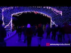 """Video Tour: """"Austin Trail of Lights"""" Holiday Light Show, 2014"""