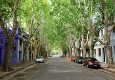 Buenos Aires Style | Palermo Shopping http://magazine.hg2.com/buenos-aires-style-a-palermo-shopping-guide/