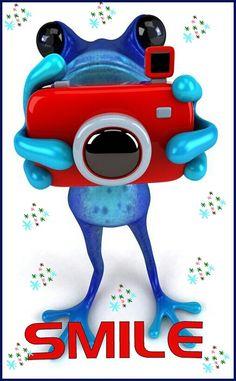SAY FROG.Ahahaha, you woulda laughed at this Funny Frogs, Cute Frogs, Frog Pictures, Cute Pictures, Sapo Meme, Frog Illustration, Frog Art, Frog And Toad, Amphibians