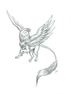 Gryphon Art - Bing Images