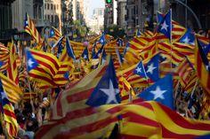 Un mar d'estelades / independence flags