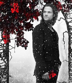Jared by MiRta5 on deviantART... beautiful manip... check it out: http://www.pinterest.com/meldarfranny/