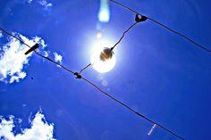 """Olhares do avesso: Vontade viva (miniconto) – Rafael Belo """"E se isto não é casamento... A lâmpada, a energia, a vontade, a paciência e muita criatividade não são luz."""" """"And if this is not marriage ... The light, energy, the will, patience and creativity are not light."""" #ele #ela #casamento #它 #她 #结婚 #यह #उसकी #शादी #He #she #marriage #él #ella #matrimonio #он #ее #брак #il #elle #mariage"""