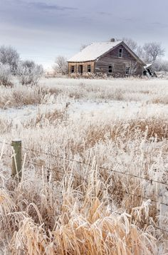 Abandoned house on the Canadian prairies (Alberta) by Chris Greenwood
