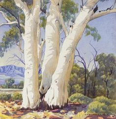 Works on Paper - Albert Namatjira - Page 2 - Australian Art Auction Records Australian Painting, Australian Artists, Landscape Art, Landscape Paintings, Queensland Australia, Melbourne Australia, Australia Travel, Tree Images, Indigenous Art