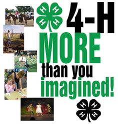 Image result for 4-h club clip art