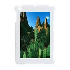 Cactus iPad Mini Switch Case