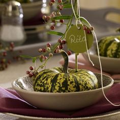 Harvest Decorations Theme | fall-table-setting-in-harvest-theme-on-plate7