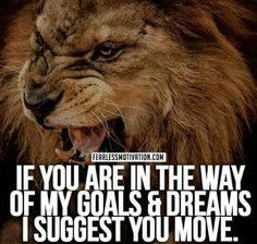 If you are in the way of my goals and dreams,  I suggest you move!