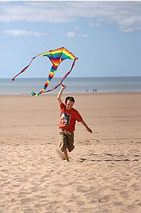 Boy with kite on Aberavon Beach Go Fly A Kite, Kite Flying, Boy On Beach, Beach Mat, Windy Day, Kites, Beaches, Outdoor Blanket, Ocean