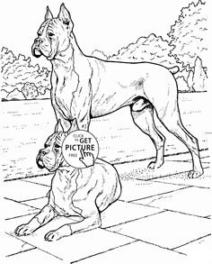 Boxer Dogs Coloring Page For Kids Animal Pages Printables Free