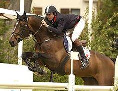 Cheval Anglo-Normand en CSO  Diamant de Semilly  http://www.elevage-de-vie.com/vente-de-chevaux.htm