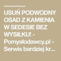 USUŃ PODWODNY OSAD Z KAMIENIA W SEDESIE BEZ WYSIŁKU! - Pomysłodawcy.pl - Serwis bardziej kreatywny Live