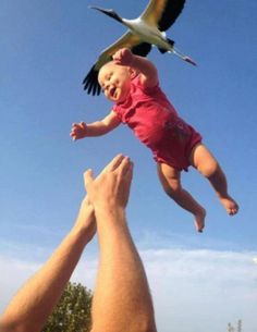 Perfectly Timed Photos 352