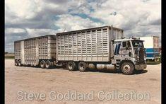 Freightliner Trucks, Peterbilt, Farm Trucks, Big Trucks, Cattle Trailers, Road Train, Paint Schemes, Semi Trucks, Livestock