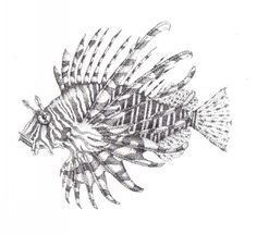 Stippled Lion Fish by Lawlfox