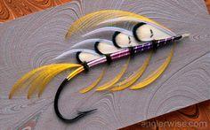 Beautiful Fishing Fly - Angelfish
