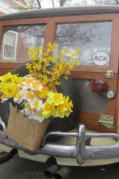 Nantucket - after a long winter, the island celebrates spring with the Daffodil Festival every April