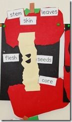 Groove-less and Going Batty!= APPLE CRAFT- learn the parts of an apple. Kid styleeeee
