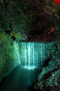 Shanklin Chine, Isle of Wight.