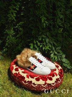 Inspired by a vintage Gucci sneaker with Web stripe along the sides, the new Ace sneaker redesigned with a plush-lined interior from Cruise 2018 by Alessandro Michele.