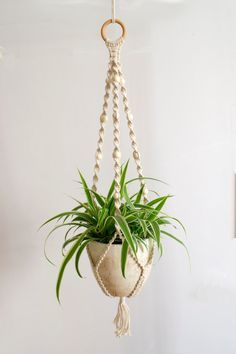 Macrame Plant Hanger / Plant Holder / Hanging Planter / Home Decor / Macrame Plant Holder / pot hanger / garden decor / beaded plant hanger