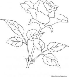 Rose Coloring Pages | Kids coloring pages