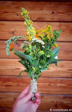 """Kräuterbuschen …Booklove """"Räuchern zu heiligen Zeiten""""… Minerals, Herbs, Plants, Women's Coats, Marigold Flower, Healthy Bodies, Medicinal Plants, Herb, Plant"""