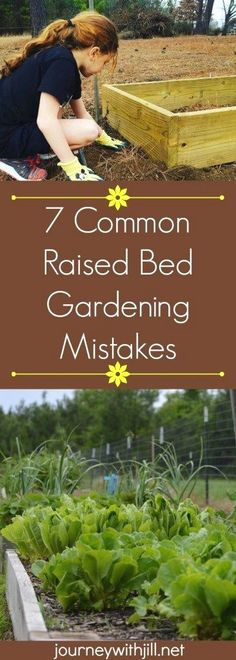 Vegetable Gardening For Beginners 7 Common Raised Bed Gardening Mistakes - If you're planning a raised bed garden for the first time or adding to your existing beds, avoid these 7 mistakes common in raised bed gardening. Raised Vegetable Gardens, Veg Garden, Garden Boxes, Lawn And Garden, Vegetable Gardening, Raised Bed Gardens, Raised Bed Planting, Diy Raised Garden Beds, Raised Flower Beds