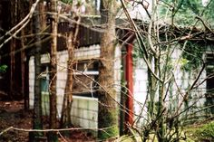 Building in the woods  #canon #film #200asa #agfa #ae1program #filmisnotdead #camera #photography #slr #vintage #35mm #50mm #lens #analog #analogue @canonuk Rob King