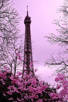 A pink Paris